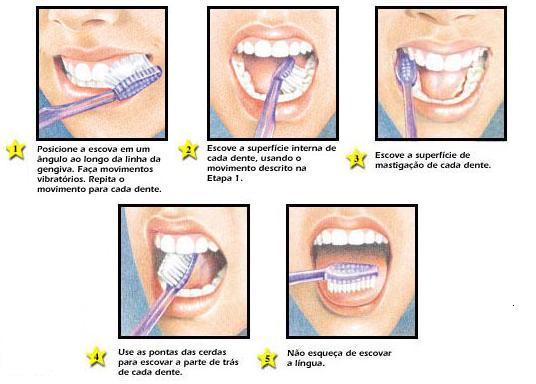 como escovar os dentes