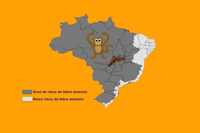 febre-amarela_21852_l