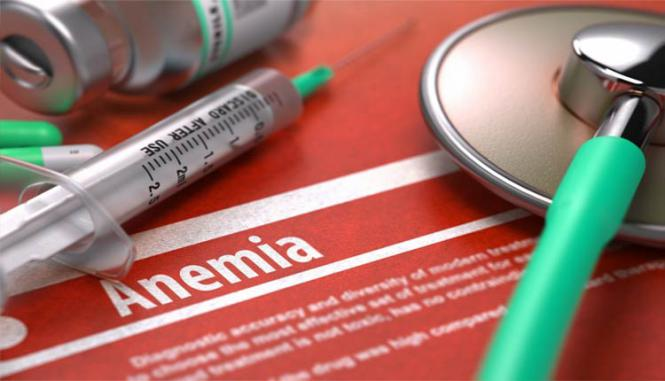 Fisiogen para anemia