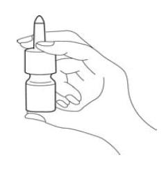 Bula Budesonida - EMS Sigma Pharma