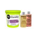 Kit Guanidina Salon Line óleo De Coco E Queratina Regular 218g